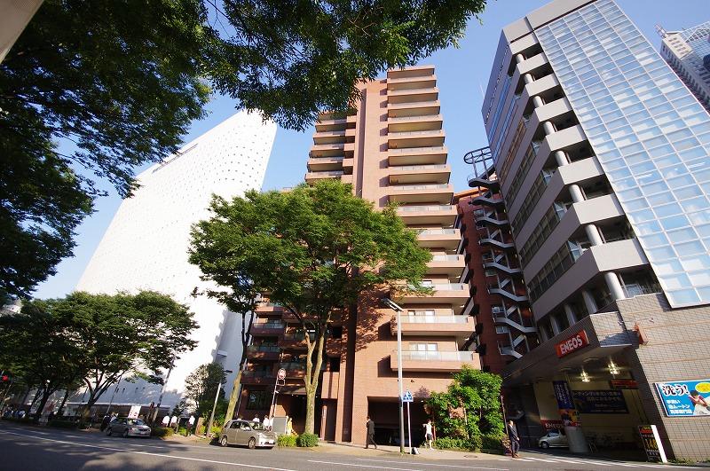 ファミール西新宿 901(65)